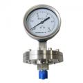 不锈钢耐震膜片压力表YPF-150B-F