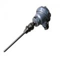 铠装热电偶WREK-131