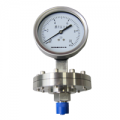 不锈钢耐震膜片压力表YPF-100B-F